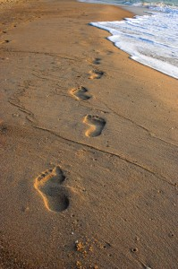 Shoe orthotics from VASYLI